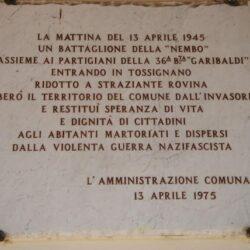 Tossign36-BRG-BianconciniNembo